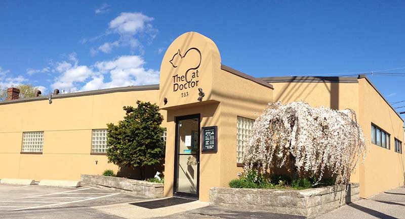 Portland veterinary hospital